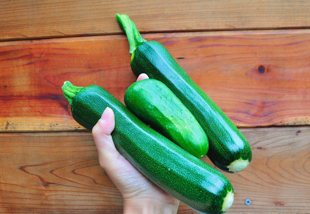 Zucchini are super prolific plants in the garden